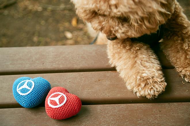 犬用おもちゃ オーガニックコットン ハート型