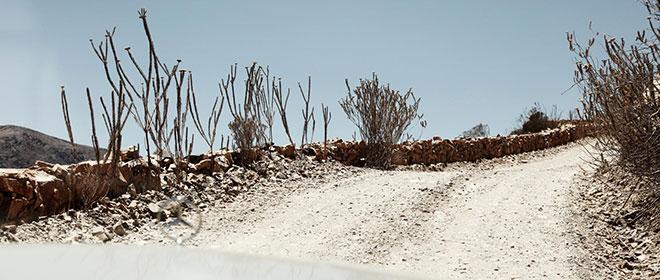 フィリップ・ヴェンテが撮った南アフリカ
