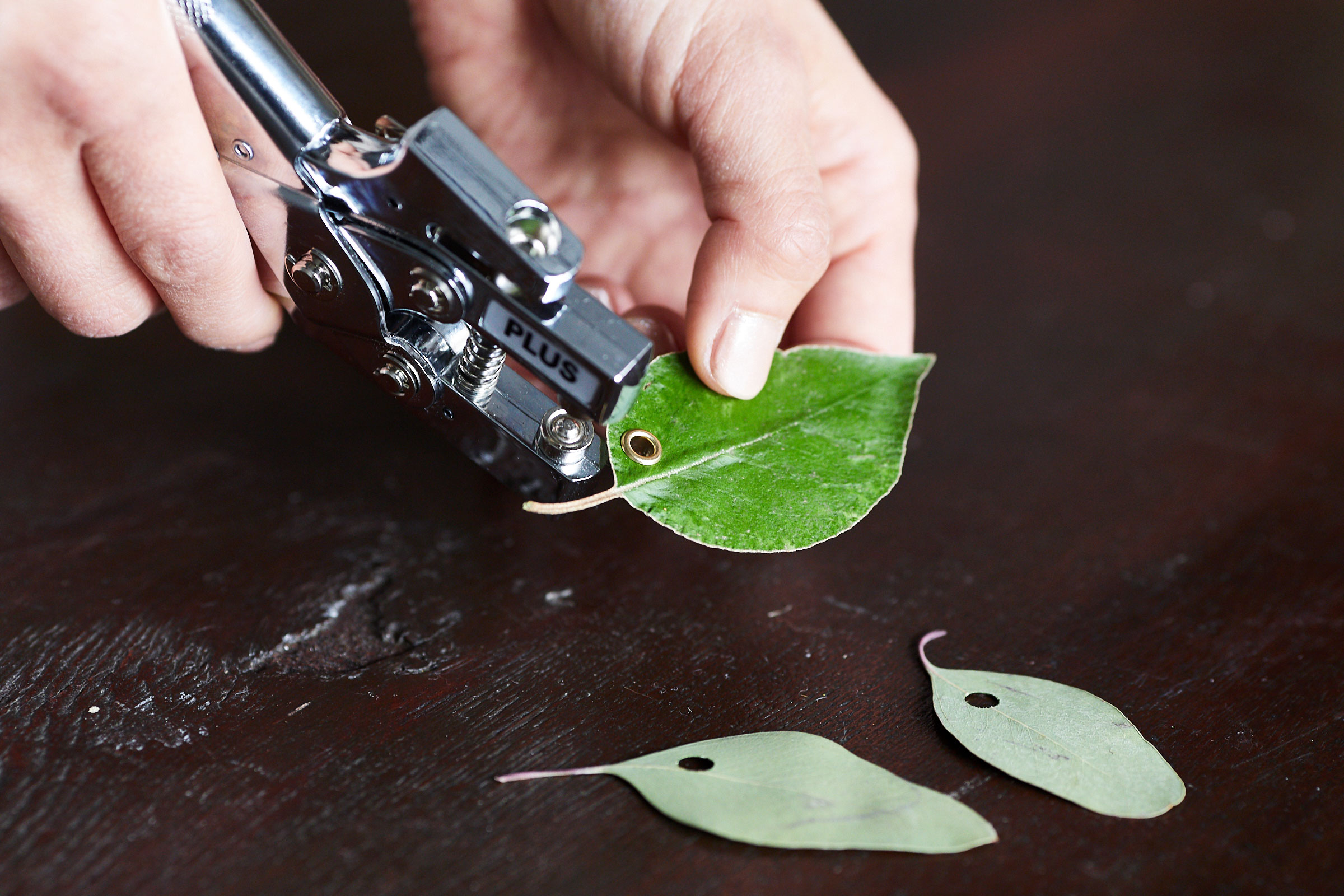 「葉っぱタグ」で、ギフトに小さな「自然」を。