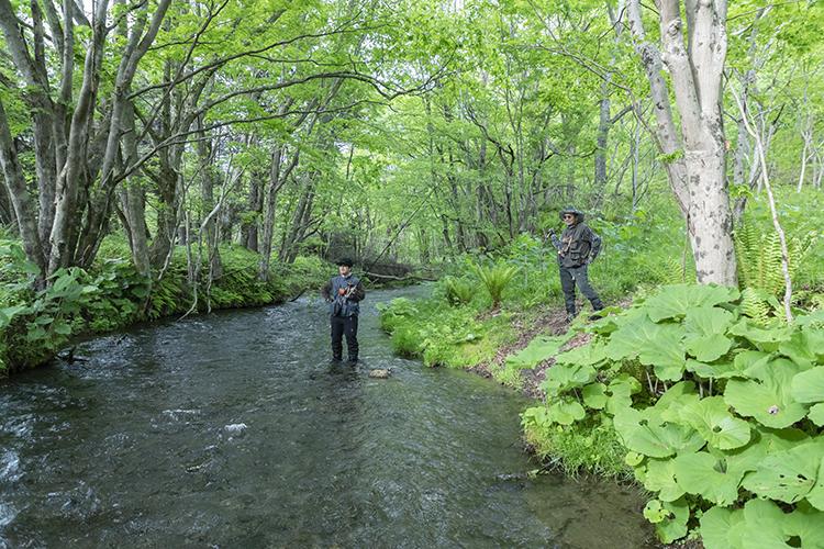 函館を、いざ出発!山麓の渓流で魚と戯れる